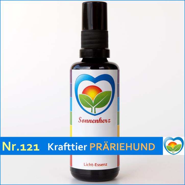 Fantastisch Präriehund Färbung Seite Galerie - Malvorlagen-Ideen ...