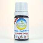 """Für Ihr Tier: Sonnenglobuli """"Göttliche Energie"""" e-motion Healing Globuli Nr. 404 energetische Lichtglobuli"""