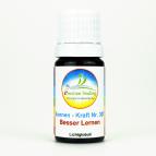 """Sonnenglobuli """"Besser Lernen"""" e-motion Healing Globuli Nr. 307 energetische Lichtglobuli"""