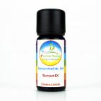 """Sonnen-energetisches Lichtöl """"Burnout-EX"""" e-motion Healing Öl Nr. 319 für Ihre Chakren"""