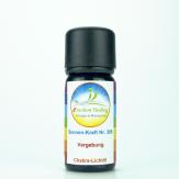 """Sonnen-energetisches Lichtöl """"Vergebung"""" e-motion Healing Öl Nr. 305 für Ihre Chakren"""